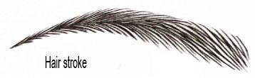 maquillage hair stroke sourcil